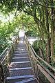 Circuito Inferior - Iguazu (4811650823).jpg