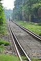 Circular Railway Track - Kolkata 2012-09-22 0332.JPG