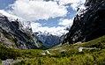 Cleddau Valley. Fiordland National Park.NZ (15819276122).jpg