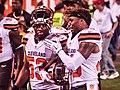 Cleveland Browns vs. Buffalo Bills (20157100263).jpg