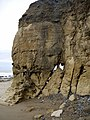 Cliff erosion north of Salterfen Rocks - geograph.org.uk - 1530660.jpg