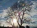 Cloud shift - panoramio.jpg