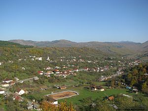 Rona de Sus - View of Coștiui village