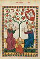 Codex Manesse 271r Von Buchheim.jpg