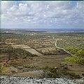 Collectie Nationaal Museum van Wereldculturen TM-20029756 Uitzicht over landschap met erfafscheidingen, met op de achtergrond Kralendijk Bonaire Boy Lawson (Fotograaf).jpg