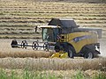 Combine harvester in the field - panoramio.jpg