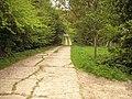 Concreted lane - geograph.org.uk - 430110.jpg