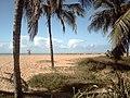 Coqueiral na Praia da barra - panoramio.jpg
