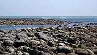 Coral, Chhera Island (02).jpg
