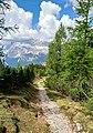 Cortina d'Ampezzo - trail.jpg