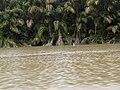 Costa Rica (6092193272).jpg