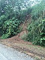 Costa Rica - Nate at the Side of the Road.jpg