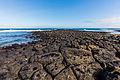 Costa de isla Santa Cruz, islas Galápagos, Ecuador, 2015-07-26, DD 49.JPG