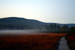 Appalachian bogs - Cranberry Glades, a bog preserve in West Virginia