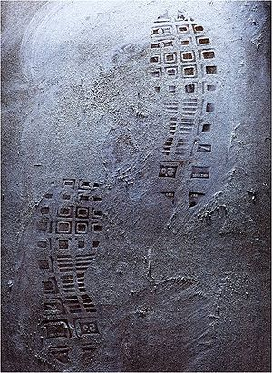 Forensic photography - Footwear impressions left at a crime scene.