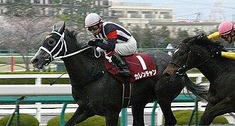 Hanshin Himba Stakes - 2011 Hanshin Himba Stakes