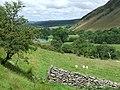Cwm Berwyn, Ceredigion - geograph.org.uk - 901401.jpg