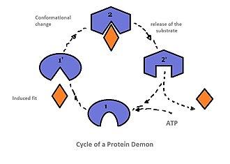 Molecular demon - Image: Cycle molecular demon