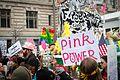 DC Women's March - 31640799373 05.jpg