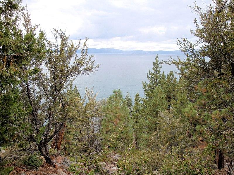 File:DSC02818, South Lake Tahoe, Nevada, USA (8373795768).jpg