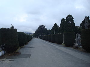 Deans Grange Cemetery - The main walkway dividing the North (Catholic) and South (Protestant) sections