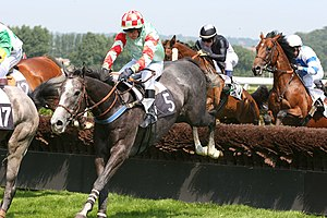 Horse racing - Steeplechase racing at Deauville