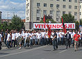 Demonstration of vetevendosje.jpg