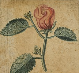 Desenho de Planta - Álbum M A B A D - Prancha N.7