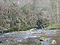 Devil's Water, near Hexham - geograph.org.uk - 124352.jpg