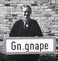 Dgnape Gn.gnape.jpg