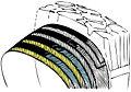 Diagonální pneumatika.JPG