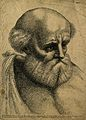 Diogenes. Line engraving after Raphael. Wellcome V0001594.jpg