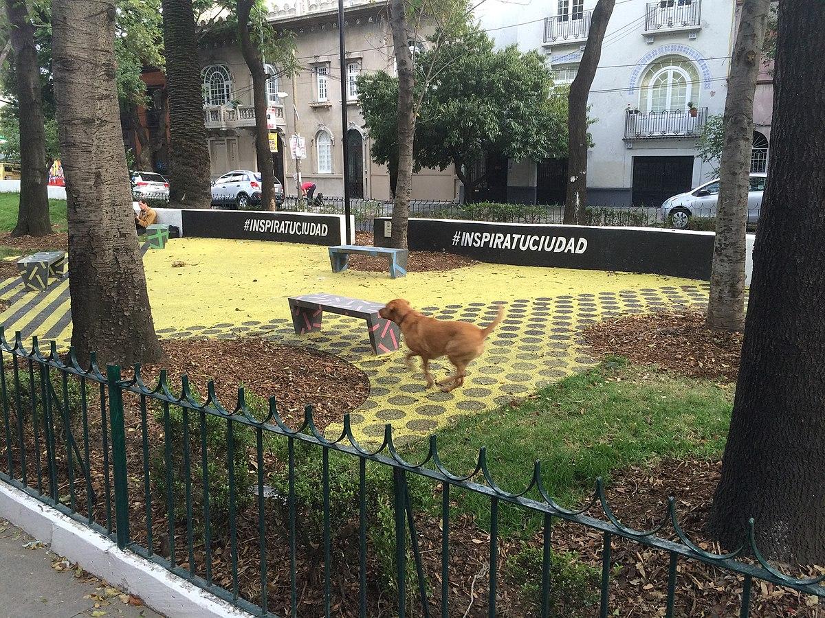 South City Dog Park