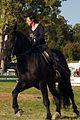 Dressage individuel mondial du cheval percheron 2011Cl J Weber06 (23975356102).jpg