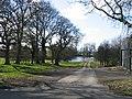 Driveway to Stoneton Manor - geograph.org.uk - 145319.jpg