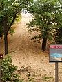 Dune Climb (closed) P6220022.JPG