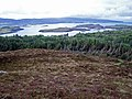 Dunvegan woodland from Cnoc Mòr - geograph.org.uk - 1320928.jpg