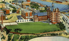 Duquesne University Wikipedia