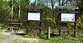 Dziewicza Gora (osada, village) (11).JPG