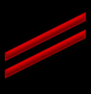 Seaman apprentice - E-2 insignia (fireman)