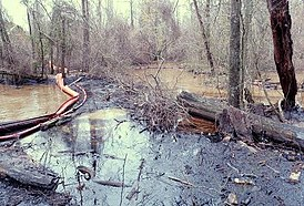 Water, trees and shrubs are covered with heavy black oil; a boom separates part of the creek from the spill