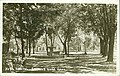 East lawn, Idaho Capitol Building grounds, Boise, Idaho, between 1915 and 1925 (AL+CA 1522).jpg