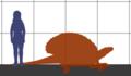 Edaphosaurus SIZE.png