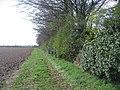 Edge of Nine Wells - geograph.org.uk - 751951.jpg