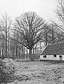 Eik bij boerderij Bakewell bij Weert, Bestanddeelnr 192-0264.jpg