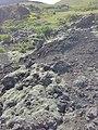 Eldfellshraun lava field, Heimaey 14.jpg