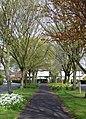Elm Avenue, Garden Village - geograph.org.uk - 774239.jpg