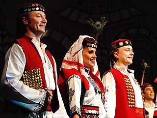 Serbs of Bosnia and Herzegovina ethnic group