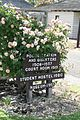 Entryway sign with roses.jpg