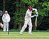 Epping Foresters CC v Abridge CC at Epping, Essex, England 048.jpg